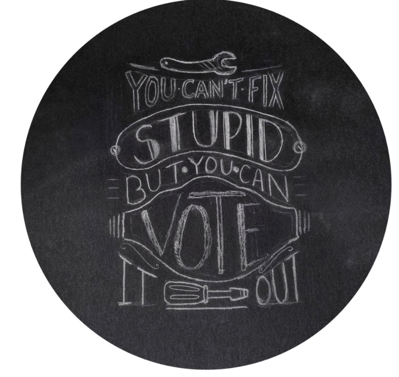 You Can't Fix Stupid, but You Can Vote it Out
